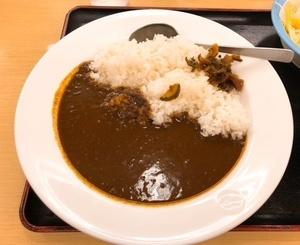 松屋カレー02_IMG_0440.jpg
