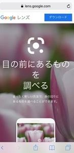 google_lens_01_IMG_5939.jpg